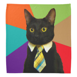business cat - black cat bandana