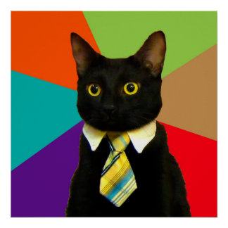 business cat - black cat poster