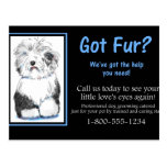 Business Dog Grooming Postcard Client Relations