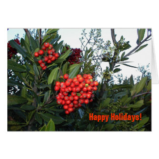 Business Holiday Card with cotoneaster berries