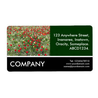 Business Photo - Bed of Tulips Labels