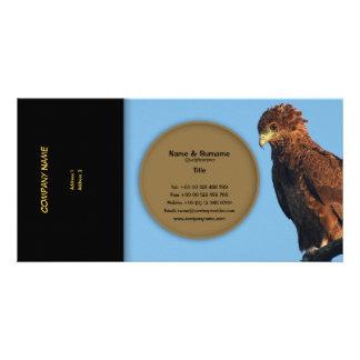 Business profile raptors eagles bateleur custom photo card