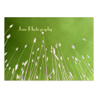 Businesscards template, wheat grass large business cards (Pack of 100)