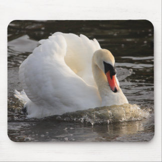 Busking Swan Mouse Pad