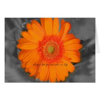 busque siempre el color en vida tarjeta de felicitación