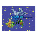 Búsqueda de la libélula postales