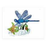 Búsqueda de la libélula tarjetas postales