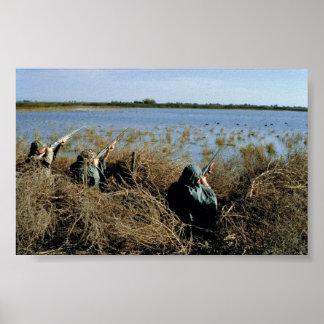Búsqueda de las aves acuáticas poster