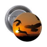 Búsqueda de los halcones de Harris Pin