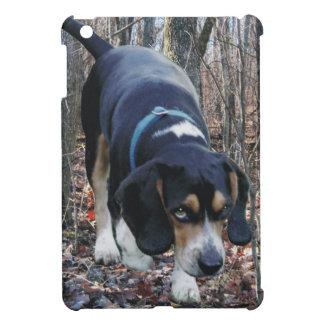 Búsqueda del beagle de maderas