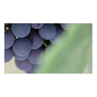 Buss. Card (heavy stock) Grapes and Leaves