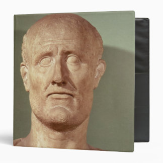 Bust of Alcibiades 3 Ring Binder