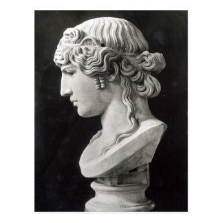 Bust of Antinous  called 'Antinous Mondragone' Postcard