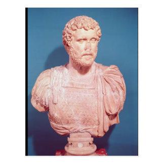 Bust of Emperor Antoninus Pius Postcard