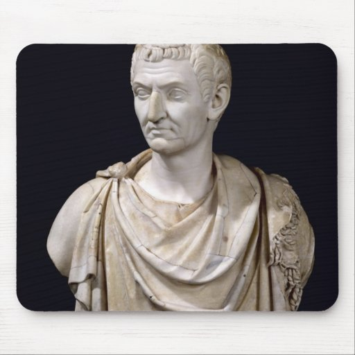 Bust of Marcus Cocceius Nerva Mousepads