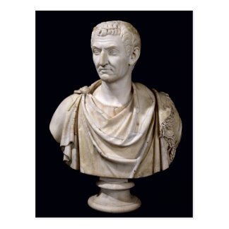 Bust of Marcus Cocceius Nerva Postcard