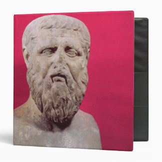 Bust of Plato  copy of a 4th century BC original 3 Ring Binder