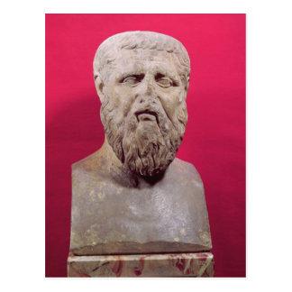 Bust of Plato  copy of a 4th century BC original Postcard