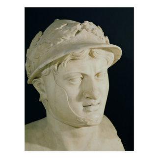 Bust of Pyrrhus Postcard