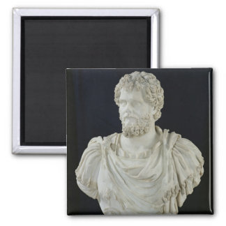Bust of Septimus Severus Magnet