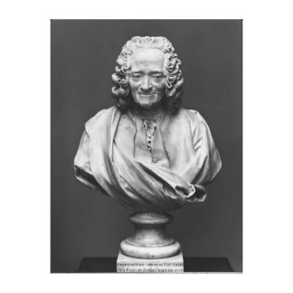 Bust of Voltaire Stretched Canvas Prints