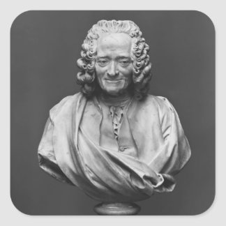 Bust of Voltaire Square Sticker