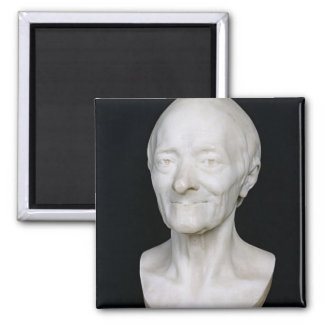 Bust of Voltaire  without his wig, 1778 Magnet