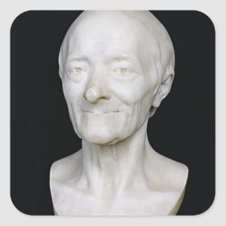 Bust of Voltaire  without his wig, 1778 Square Sticker