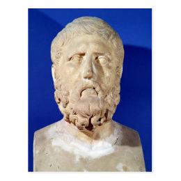 Bust of Zeno of Citium Postcard