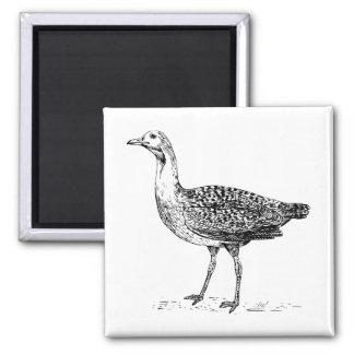Bustard Bird Sketch Refrigerator Magnet