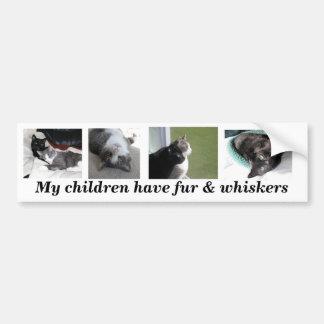 Buster & Gabe bumper sticker