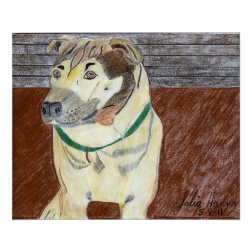 Buster On The Deck by Julia Hanna print