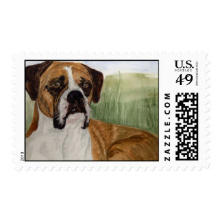 'Buster' Postage