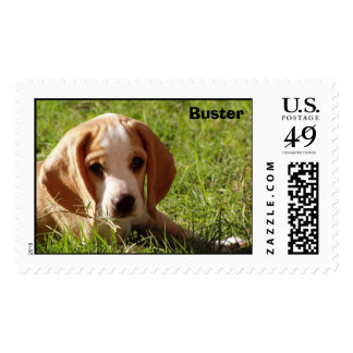 Buster the Lemon Beagle Stamp