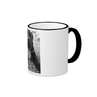 Buster the Staffordshire Cross Dog, Coffee Mug/Cup Ringer Coffee Mug