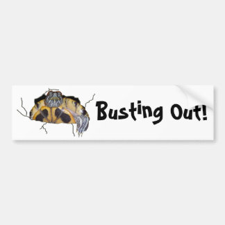 Busting Out! Turtle Bumper Sticker
