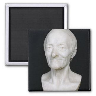 Busto de Voltaire sin su peluca, 1778 Imán De Frigorífico