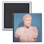 Busto del emperador Antoninus Pius Imán De Nevera