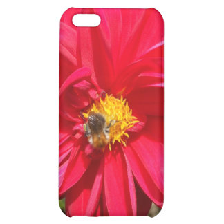 Busy as a bee... iPhone 5C cases