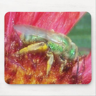 busy-as-a-bee mouse pad