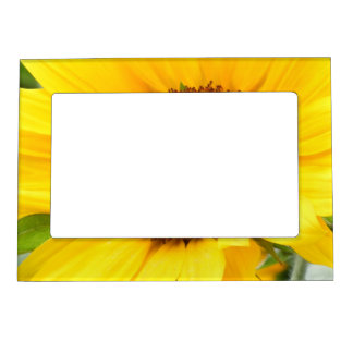 Busy Bee 2012 Magnetic Photo Frame