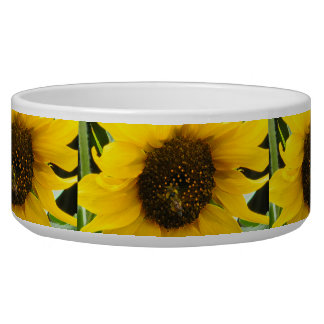 BUSY BEE ACCENTED BOWL