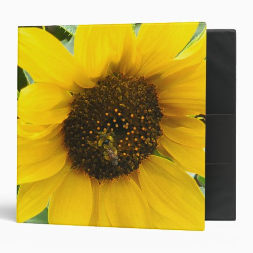 Busy Bee Accented Edges 3 Ring Binders