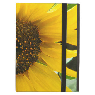 Busy Bee Accented Edges iPad Air Cover