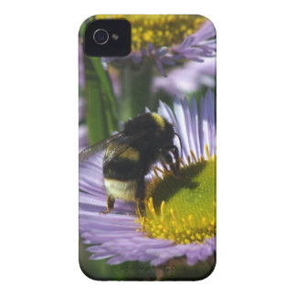 Busy Bee Case-Mate iPhone 4 Case