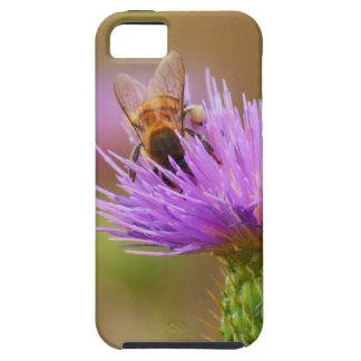 Busy Bee In Purple Thistle Close Up Photograph iPhone 5 Covers
