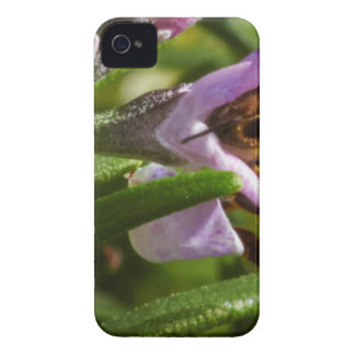 Busy Bee iPhone 4 Cover