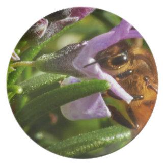 Busy Bee Melamine Plate