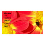 Busy Bee Nature Business Card