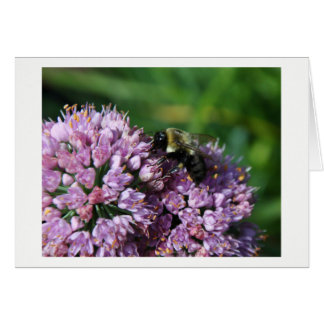 Busy Bee Notecard